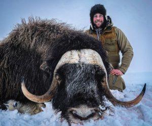 Alaska Governors (SX050) Nunivak Island Muskox Permit Raffle