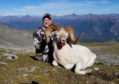 Dall Sheep Hunt Raffle